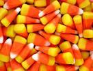 sugar corn