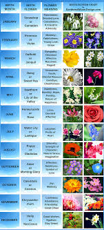 Month Flowers Chart Birth Flowers Aprils Daisy And Sweet Pea Birth Flower