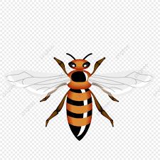 были королева Png пчела королева Png и вектор для бесплатной загрузки