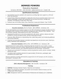 Accounts Payable Cover Letter Template Serpto