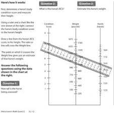 Level 2 Workbook Horse Lovers Math