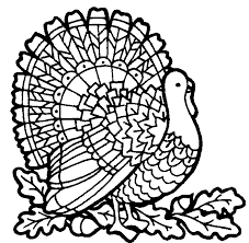 Small Picture Turkey Coloring Pages Free Printable Coloring Pages