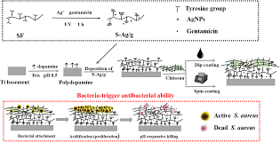 Construction Of Self Defensive Antibacterial And Osteogenic Agnps