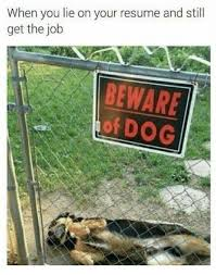 When You Lie On Your Resume And Still Get The Job Beware Of Dog