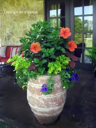 I'd love to buy a pot like this. Great combo for a large