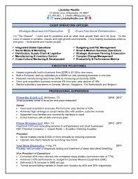 Chief Operating Officer Resumes Chief Operating Officer Resume Pdf Hospital Objective