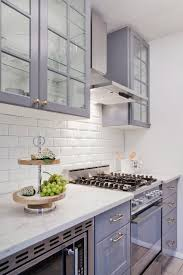 Ideas And Expert Tips On Glass Kitchen Cabinet Doors Decoholic