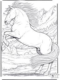 Realistic Horse Coloring Pages Funnycoloringcom Animals