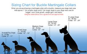 Big Dog Size Chart Martingale Collar With Buckle Quick Release Martingale Dog