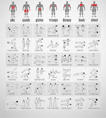 Sexercise Chart Bodyweight Exercises Chart Body Fitness Club Workout