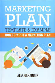 Marketing Plan Template Example How To Write A Marketing