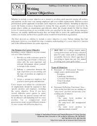 Entry Level Resume Objective Examples Berathen Com