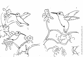 Small Picture Clip Art Hummingbird Hummingbird Coloring Pages Coloring Page Free