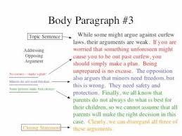 the persuasive essay  the persuasive essay