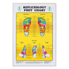 Foot Chart Foot Reflexology Chart
