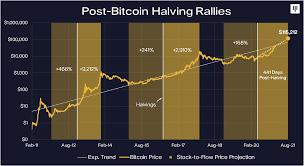 Will bch price rise or crash ? Bitcoin Rally 2017 Vs Today Pantera Blockchain Letter January 2021 By Pantera Capital Medium