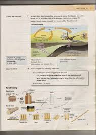 random book and movie reviews write a short description of the  write a short description of the carbon cycle using the diagram and notes below