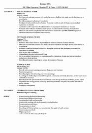 Sample Nurse Practitioner Resume New Awesome Programmer Resume ...