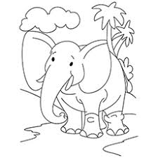 printable elephant coloring pages.  Coloring Coloring Sheet Of Majestic Elephant On Walk On Printable Pages R