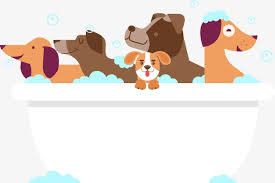 vector group of bathing dogs bathe dog bathtub png and vector