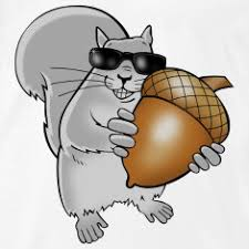 Image result for blind squirrel strategy