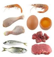 Kepentingan Protein