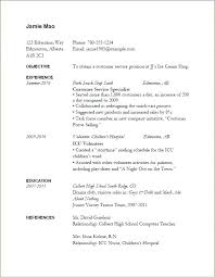 Resume Examples Pdf Delectable It Job Resume Samples Sample Professional Resume