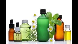 carrier oils for hair. tea tree oil with carrier stops hair loss, head lice how to prepare and apply at home oils for u