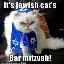 Image result for bar mitzvah meme