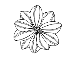 Small Picture daisy flower coloring pages wwwmindsandvinescom