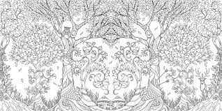 Coloring Pages Coloring Pages 91t53hrm2bl Amazon Com Enchanted