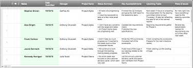 Project Status Sheet Project Status Report Checklist Creating Your Weekly Report 1