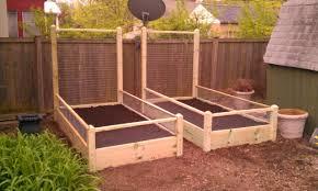 buy raised garden bed. Modren Garden Intended Buy Raised Garden Bed B