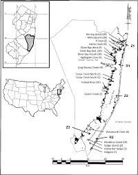 Barnegat Inlet Tide Chart 2016 Restoration Site Locations In Barnegat Bay New Jersey