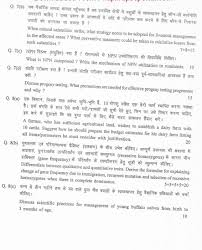 essay on animal husbandry essay for college application related pdfs for question and answer for animal husbandry waec title type food animal husbandry and the new millennium a special issue of journal of applied