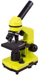 <b>Микроскоп Levenhuk Rainbow</b> 2L LimeЛайм по цене 7 490 руб ...