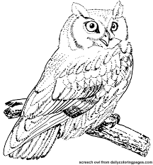 Small Picture owl coloring pages Google Search sarah and olivia Pinterest