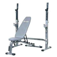 Golds Gym Workout Benches Equitakids Com