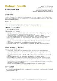 Cv Guidelines Account Executive Resume Template Account Manager Cv
