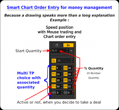 Smart Chart Order Entry For Money Management Ptmc Feature