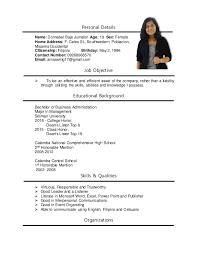 Resume For Job Fair Professional Resume Templates