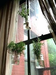 hanging indoor window herb garden window herb garden attractive hanging herb garden kitchen and best window herb gardens ideas only on