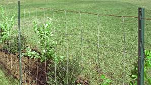 Install a Woven or Barbed Wire Fence