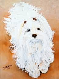 Small Picture 65 best Havanese images on Pinterest Dog art Animals and Coffee