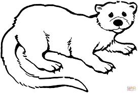 Verdrietige Otter Kleurplaat Gratis Kleurplaten Printen