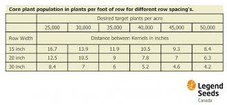 Plant Population For Soybeans And Corn