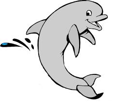 Delfino Da Colorare Per Bambini