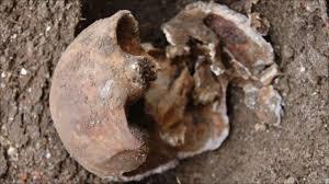 'Barnes mystery' of Attenborough <b>garden skull</b> solved - BBC News