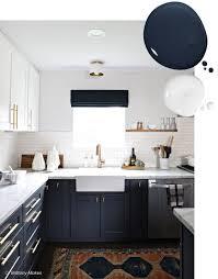 Kitchen Cabinet Paint Ideas Best Inspiration Design