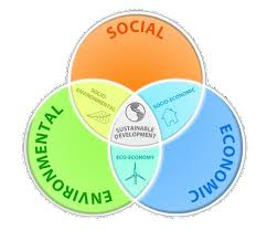 sustainable development  venn diagrams and basic needs on pinterest